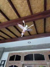 Bidadari (Angel) guarding the Sandat suite