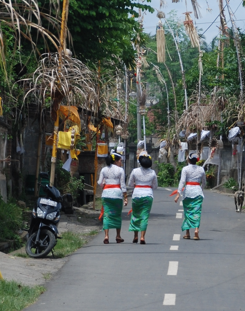 Angel House Ubud: Tours or Make Your own:)