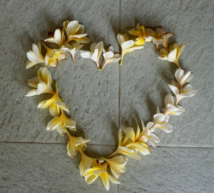 Honeymoon Heart at Angel House