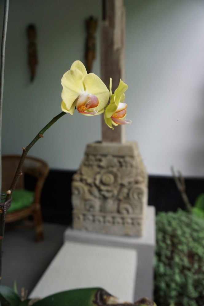 Orchids on Sandat veranda with hand carved antique sendi/feet on the veranda railing.