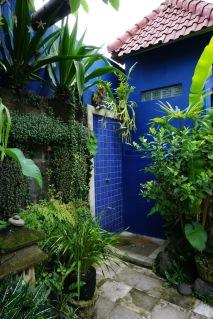 Rainwater shower in garden