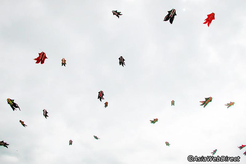 bali-kites-festival-gallery4